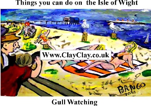 'Gull Watching' 'Things you can't and can do in  IW' Postcard based on original painting by BB Bango