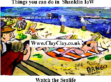 'Watch the Sea Life' 'Things you can't and can do in Shanklin IW' Postcard based on original painting by BB Bango