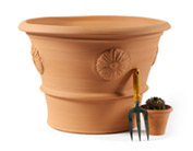Large Flower Pot with rose (2nd) . 440mm High. Diameter 700mm (at top) .Direct from Clay Clay Shop £129.99.